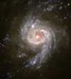 small D = 00050 Starburst Galaxy NGC 3310